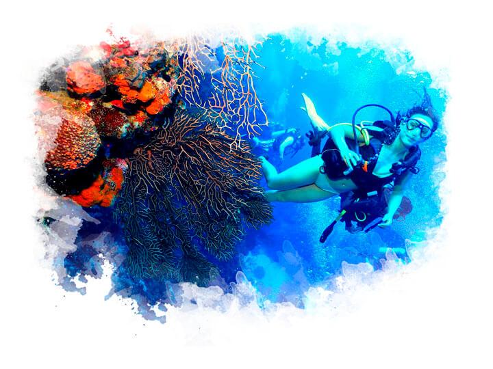 arrecifes-maria-la-gorda-8