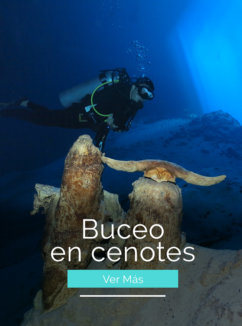 buceoencenotes
